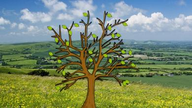 Prayer tree: England and Wales