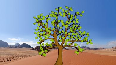 Prayer tree leaves: the Middle East