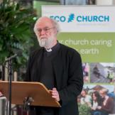 Eco church project launches at St Paul's Cathedral
