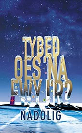 Tybed oes 'na fwy i'r Nadolig - Might There Be More to Christmas? (Welsh edition)