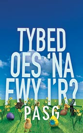 Tybed Oes 'na Fwy i'r Pasg? – Might There Be More to Easter? (Welsh edition)
